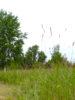 Le labyrinthe de la biodiversité, en bordure de la Marcaissonne