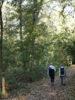 Le Bois du Bousquet : Diagnostic environnemental et position de SONE